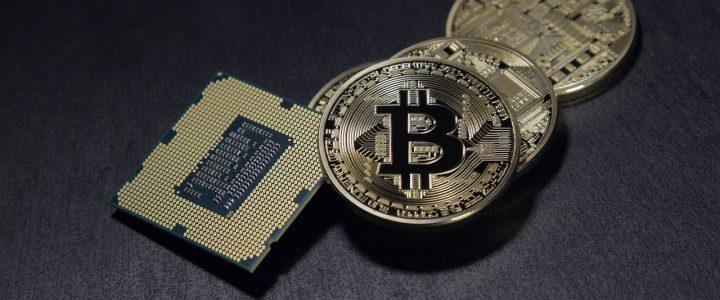 Crypto Freefall and Your Portfolio